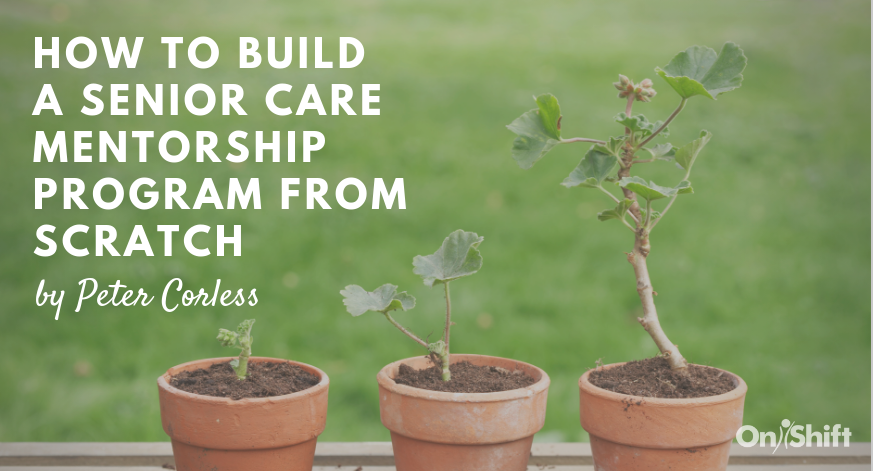 How To Build A Senior Care Mentorship Program From Scratch (1)